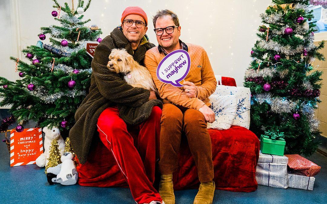 Pet charity photography | Alan Carr at Mayhew