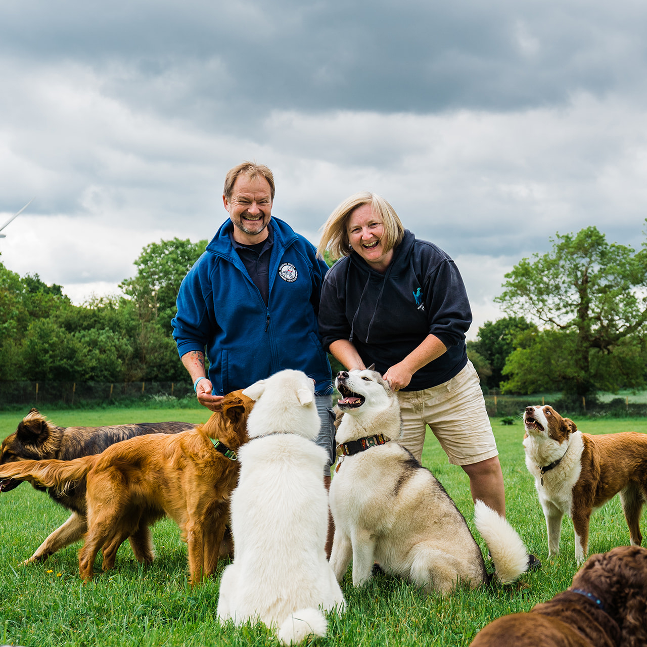dog sitters stand in field laughing surrounded by different types of dogs